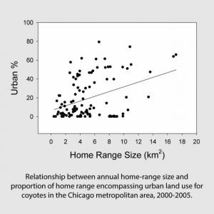 Relationship between annual home-range size and proportion of home range encompassing urban land use for coyotes in the Chicago metropolitan area, 2000-2005