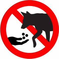 Do not feed coyotes