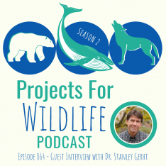 Projects for Wildlife Podcast graphic