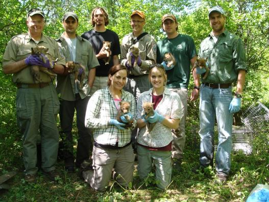2012 research team with Forest Preserve partners