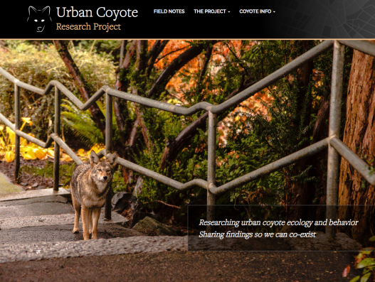 Urban Coyote Research Project front page screen shot