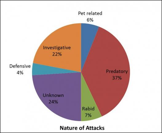 nature of attacks