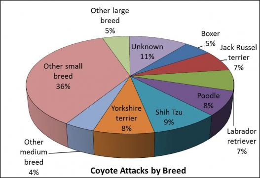 Attacks by dog breed